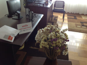 Dry_Flowers_in_office